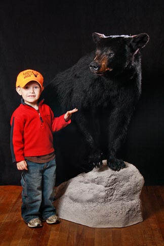 Bear Mount - Larin Taxidermy - Berlin NH     Photography by C3 Photography
